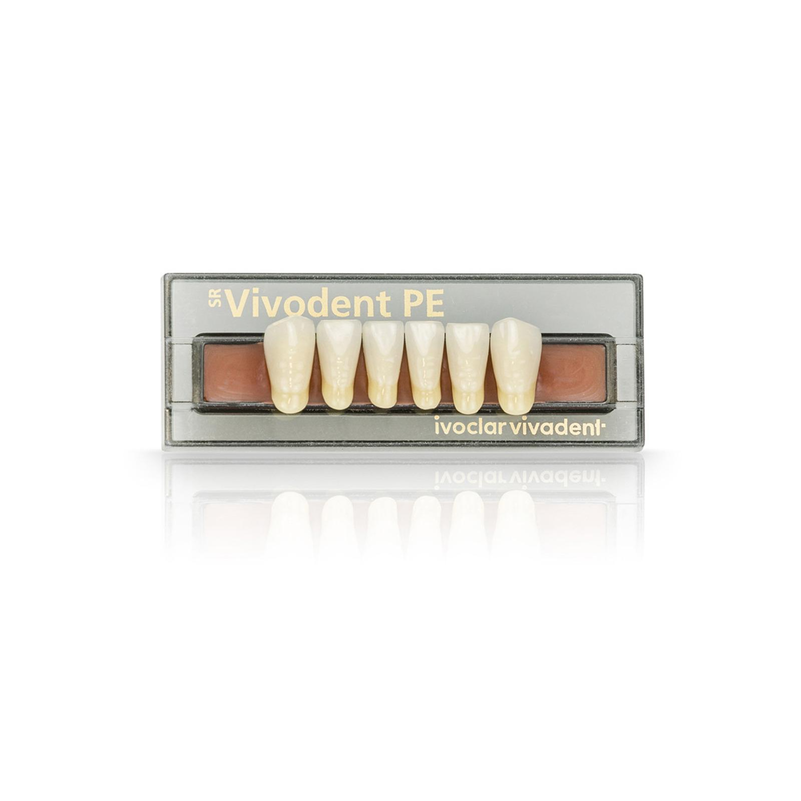 SR Vivodent PE Set of 6