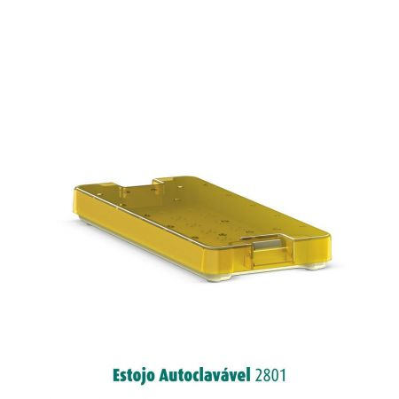 AUTOCLAVABLE CASE - MODEL 2801 - WITH SILICONE STRIPS - LARGE CAVITIES1 case 186X81X18mm   2 silicon